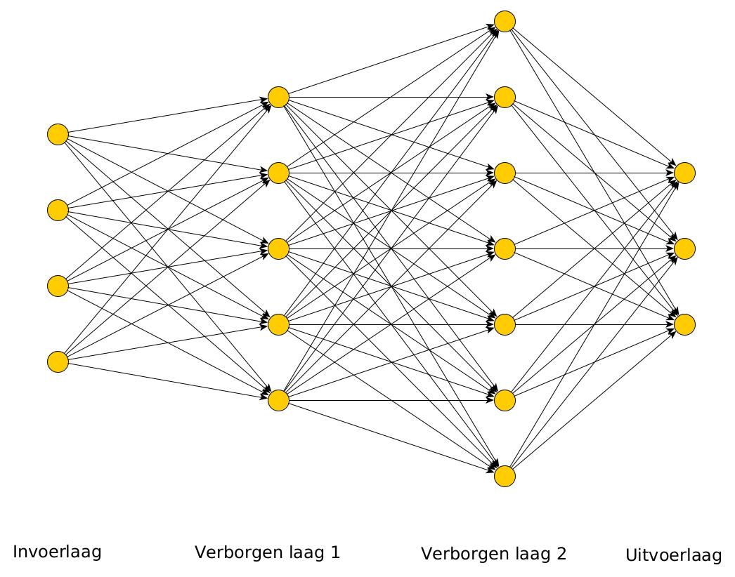 /images/neuraal-netwerk.png